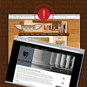 Professionally Designed Websites