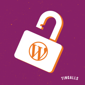 Custom WordPress cautions